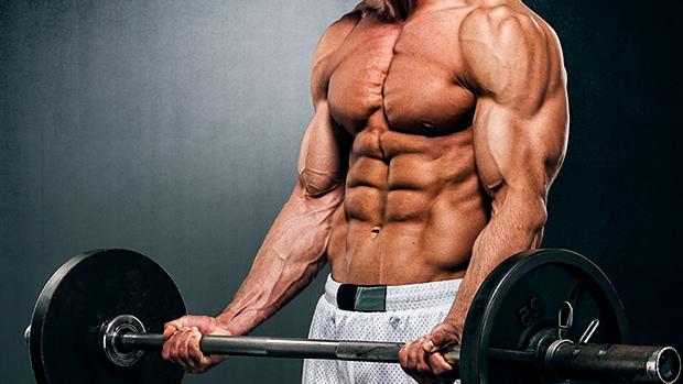 muscle-mass-turinabol