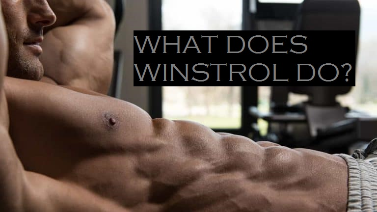 what-does-winstrol-do