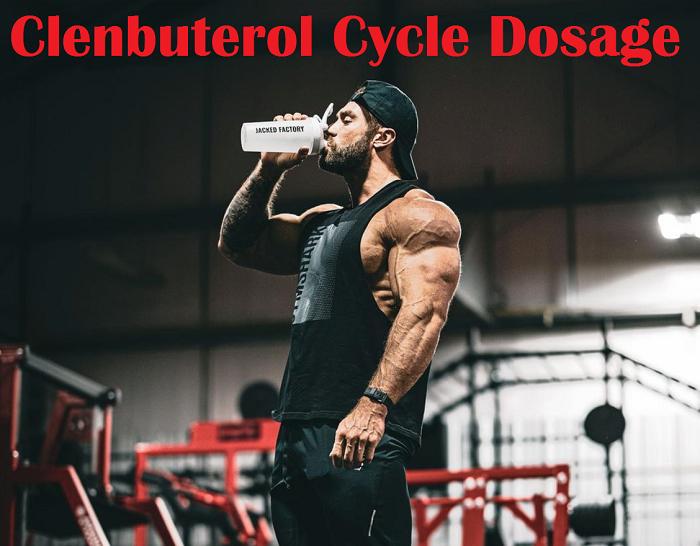 Clenbuterol-Cycle-Dosage