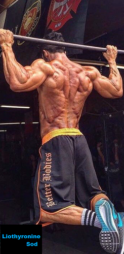 Liothyronine-Sod-muscular-mass