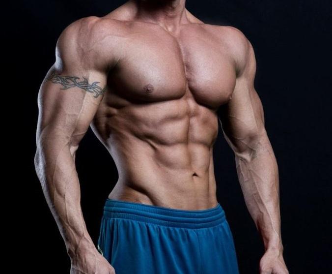 Halotestin-body-man
